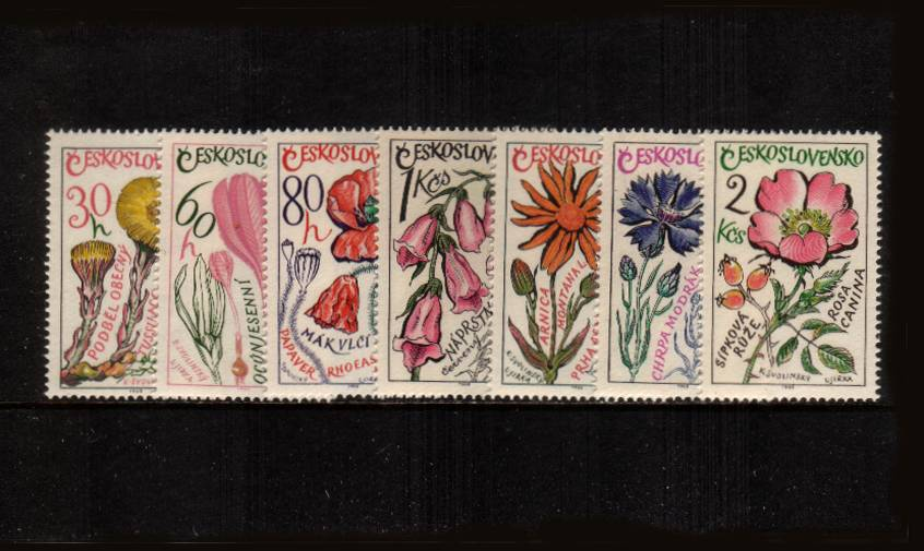 Medicinal Plants<br/>