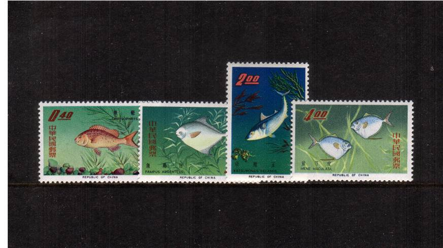 Taiwan Fish<br/>