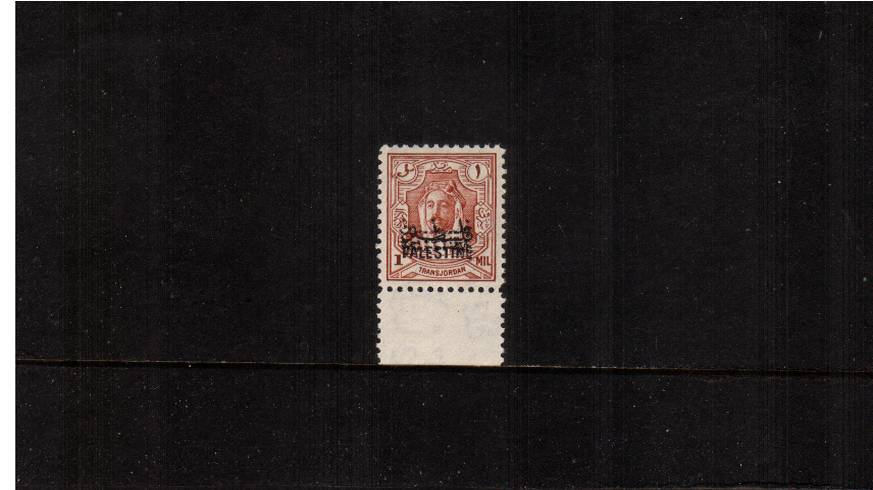 The 1m Red-Brown<br/>