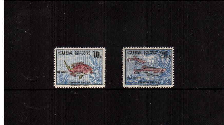 Poey Commemoration<br/>