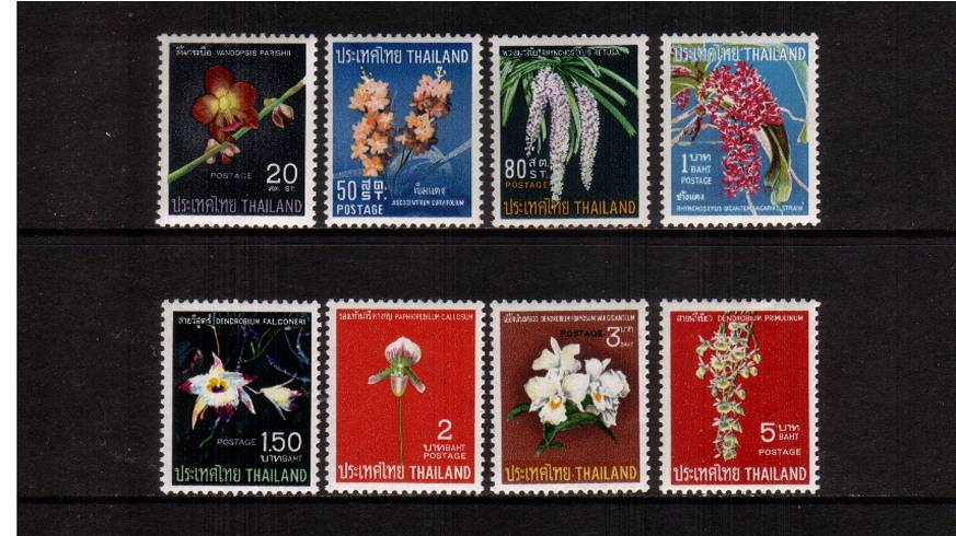 Thai Orchids<br/>
