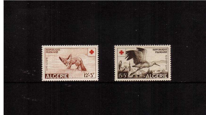 Red Cross Fund<br/>