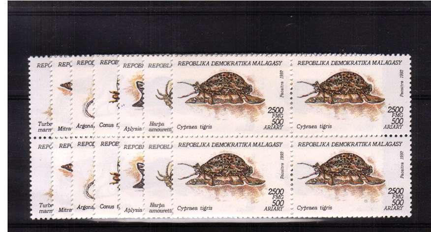 Molluscs - Sea life set of seven in superb unmounted mint blocks of four. <br/>SG Cat �.60