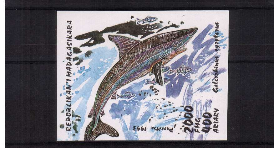 Sharks minisheet superb unmounted mint.