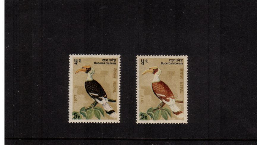 The Great Indian Hornbill<br/>