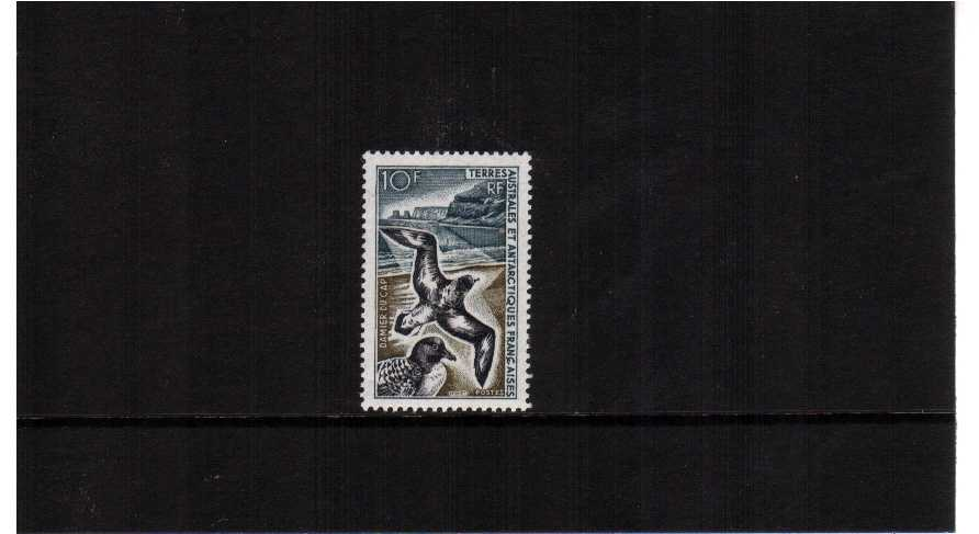 Pintado Petrel bird single superb unmounted mint