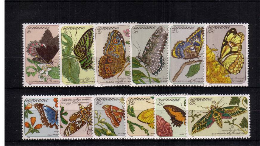 Butterfly Paintings<br/>