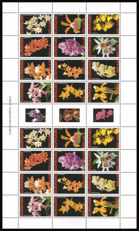 The Orchids complete sheet showing two blocks of twelve with the bonus of the gutter labels. Rare sheet. SG catalogue (2008 edition) lists at � x2